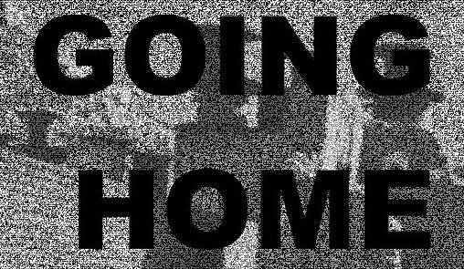 Going Homo