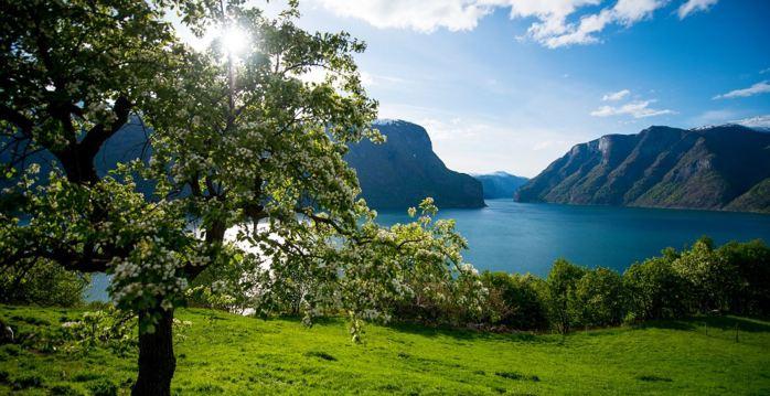 Norway-fjords-Aurlandsfjord